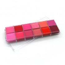 Paleta Lipstick profesional 12 nuante Matte