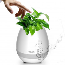 Ghiveci flori Smart Music cu bluetooth, LED si touch