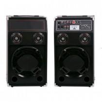 Boxe audio active Temeisheng DP 284A
